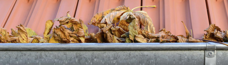 Dakgoot met bladeren
